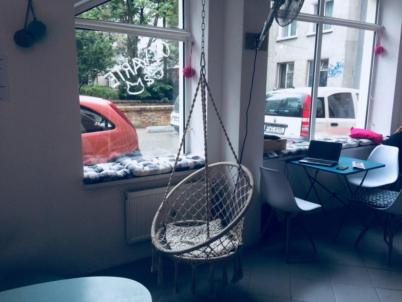 kocia kawiarnia Wrocław; koton kocia kawiarnia