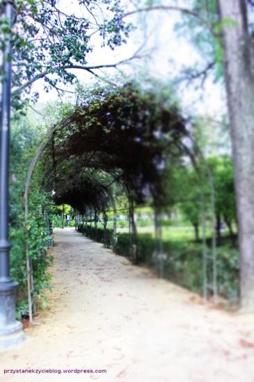 parque_de_maria_luisa8
