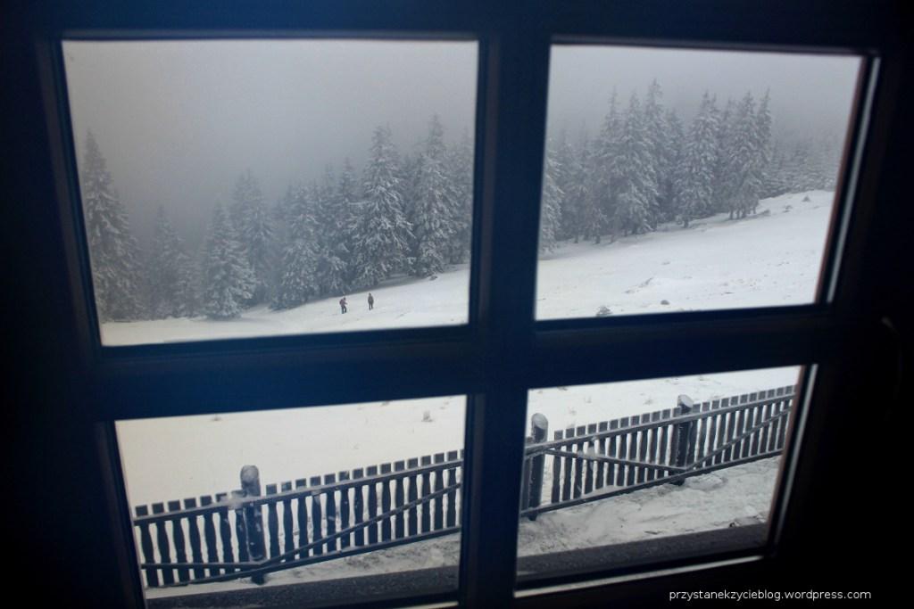 schronisko pod snieznikiem_widok