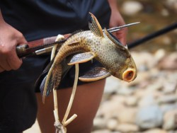 Fishing, połów, Ecuador