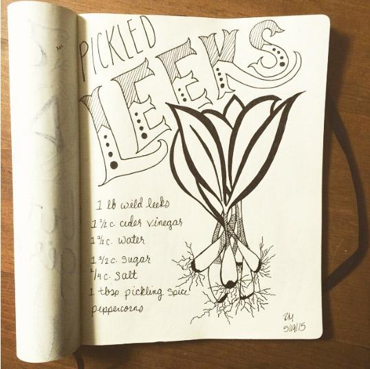 LEEKS_01a_original_sketch