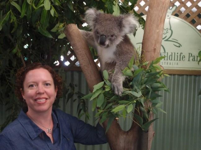 Koala and Poe