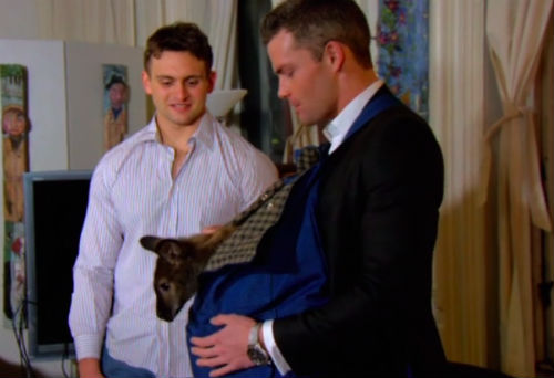 Alex from Million Dollar Listing and his wallaby