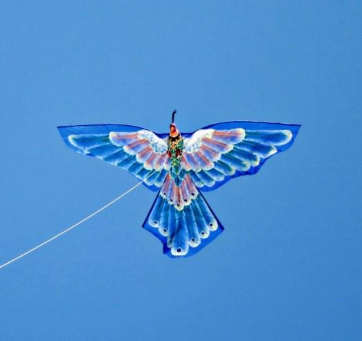 Henri the Balinese kite