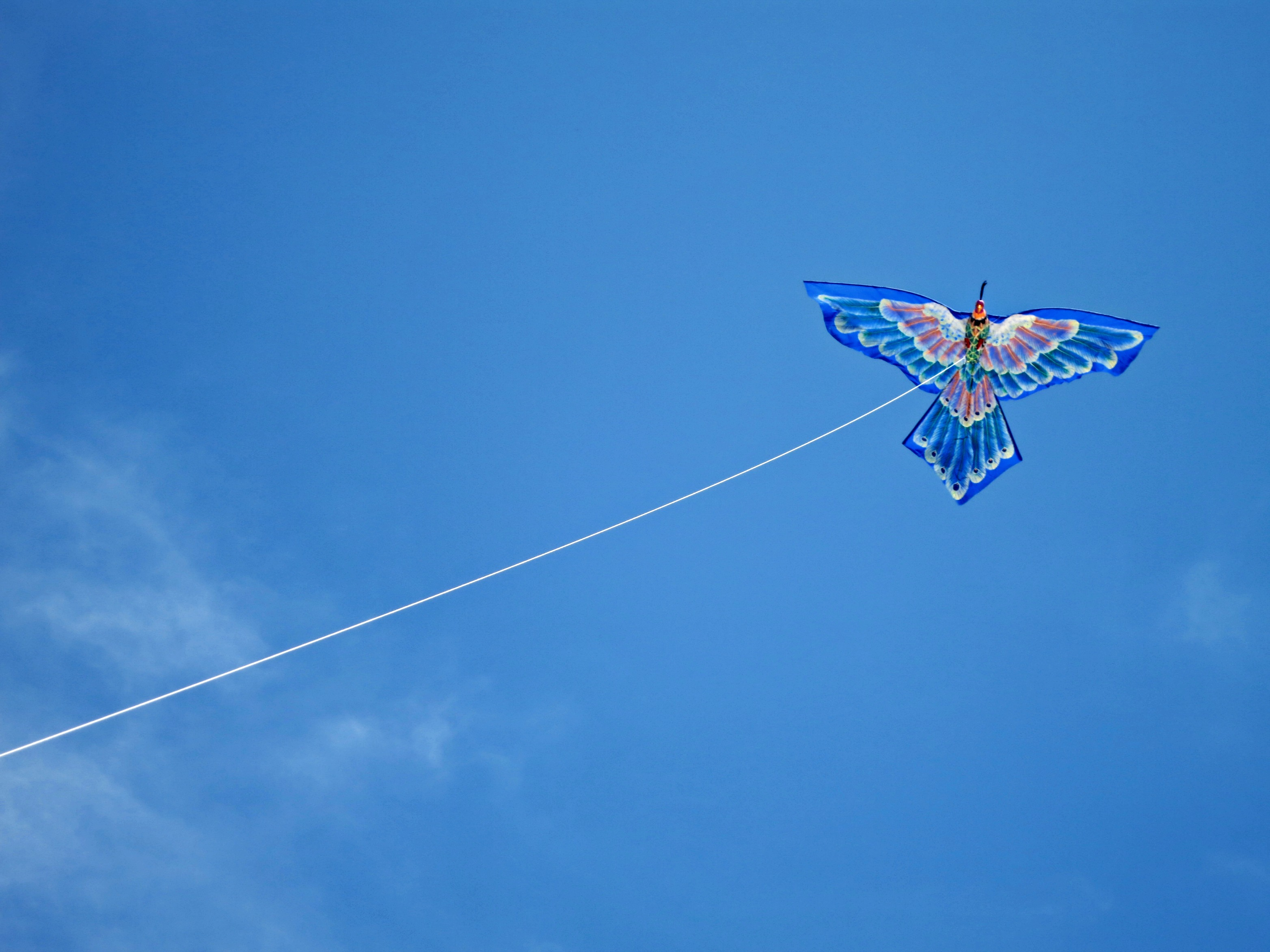 flying a kite on a balinese beach is basically like getting in a