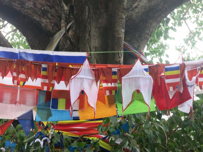 Prayer flags at Dambulla Caves