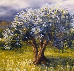 olivier-en-hiver