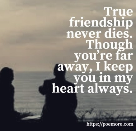 I Miss Your Friendship Quotes