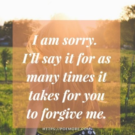 I am Sorry Letter For You
