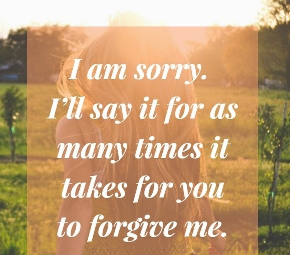 I Am Sorry and I Love you Messages