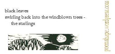 haiku-black-leaves-4th-version2