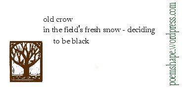 haiku-old-crow