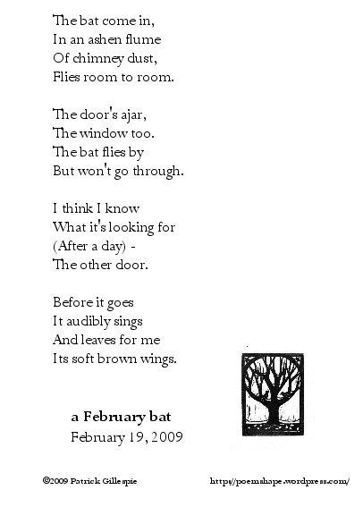 a february bat