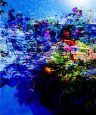 Phosphorescent Glow: Jeanette Stevenson