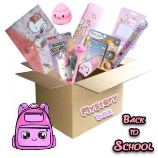 XL Back to school box pink