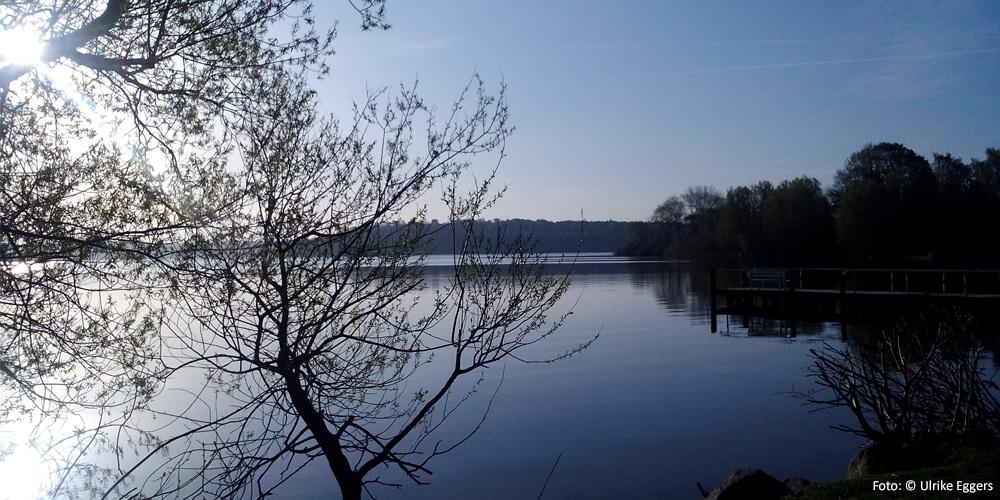 Früher Morgen am See