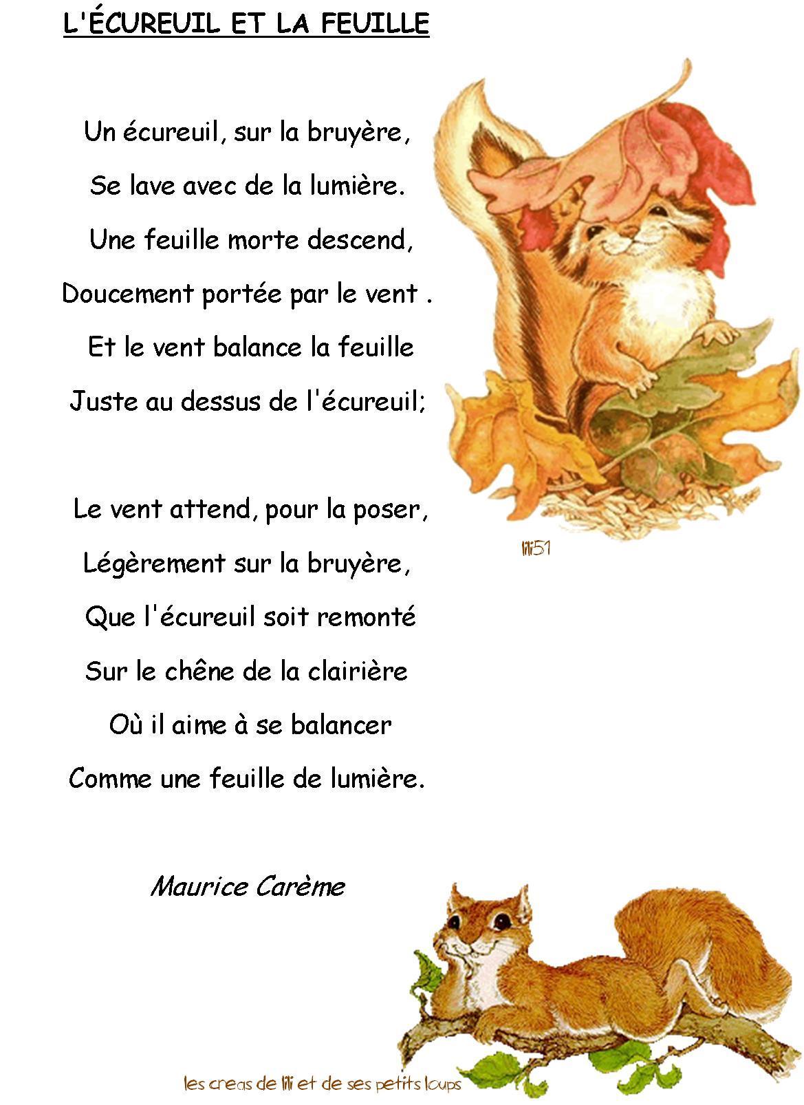 Poésie L écureuil Et La Feuille : poésie, écureuil, feuille, Poesie, L'ecureuil, Feuille
