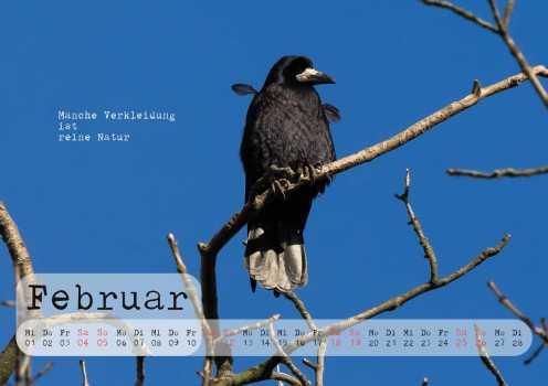 rabenkalender2017-v3-seite003
