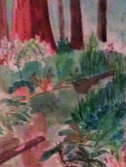 Redwood Creek mixed media