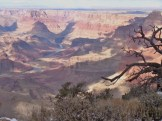 """My first view of the Grand Canyon from a """"secret spot"""" our tour guide shared with us."""