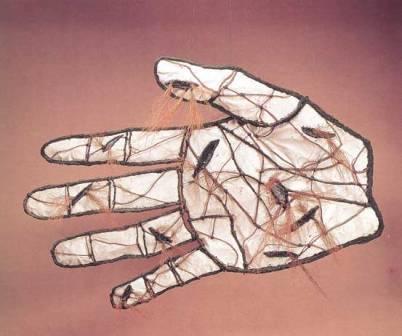 La mano creadora, de Juan Francisco Elso