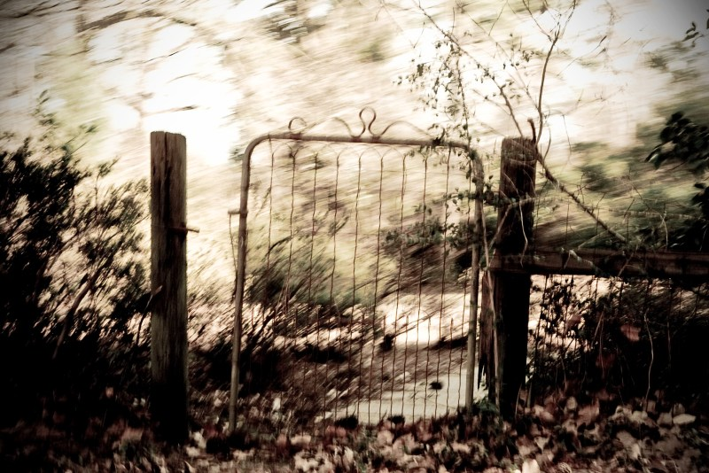 God in the Yard Gate by Kelly Sauer
