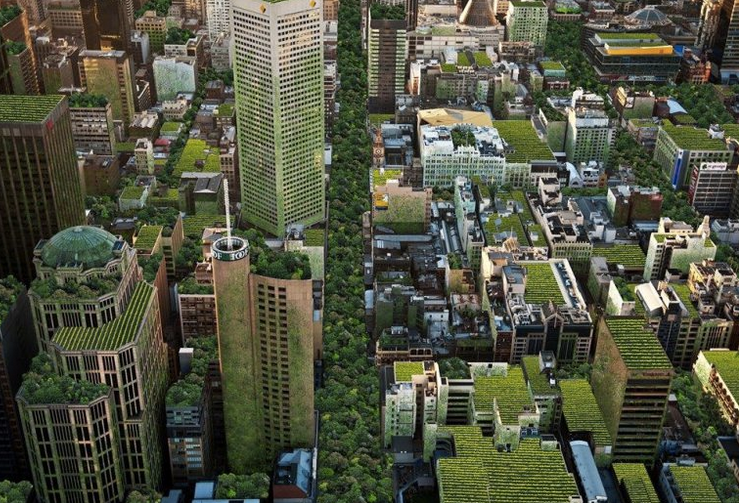 Melbourne's plan to green the city
