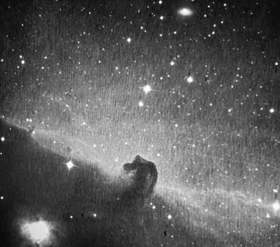 horsehead nebula from dusk observatory