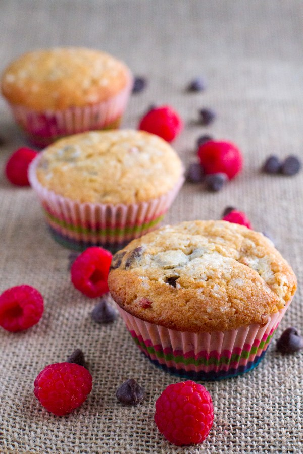 Raspberry Chocolate Chip Muffins - Poet in the Pantry