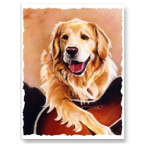 Golden Retriever Postcard from Zazzle