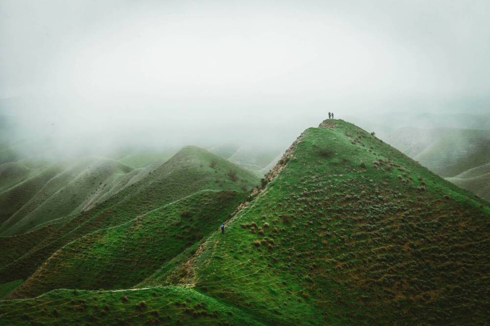 green mountainous terrain in dense fog