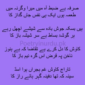 Mahram Nahin Hai Tu Hi Nava Ha-e-Raz Ka 1