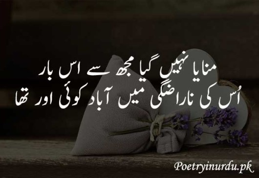Heart touching poetry text