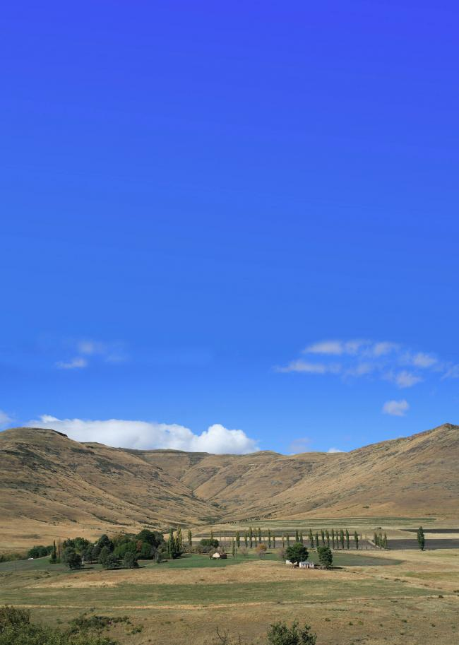 Photo:  Farm in the Southern Drakensberg - Eastern Cape.  WW Schwim 2008