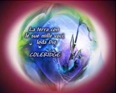 colderigeita