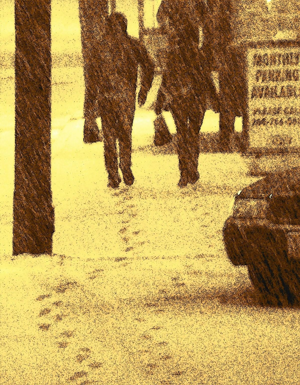 winter 205sc