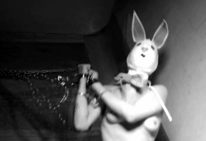 the_bunny_game_Adam_Rehmeier_2-777x534