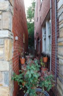 Alleyway in Alexandria
