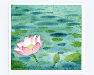 waterlily watercolor