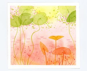 Lily pad watercolor and ink illustration