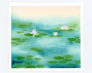 waterlilies among lily pads watercolor illustration