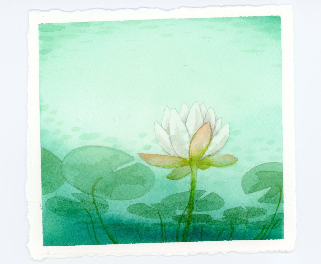 underwater view of waterlily watercolor illustration