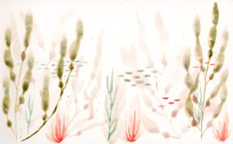 Underwater scene in watercolor
