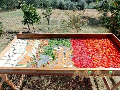 VEGETA DE CASA - cu legume uscate
