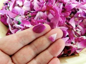 pofta-buna-gina-bradea-dulceata-naturala-fara-conservanti-de-trandafiri.jpg