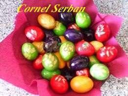 cornel serban