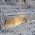 Как снегопады помогли рекам и водохранилищам Крыма