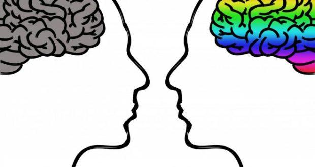 Лабиринты разума. 22 июля — Всемирный день мозга
