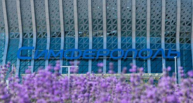 В аэропорту «Симферополь» расцвело более 19 тысяч кустов лаванды