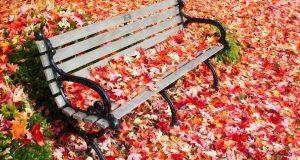 Ялта — в десятке популярных направлений для отдыха в октябре